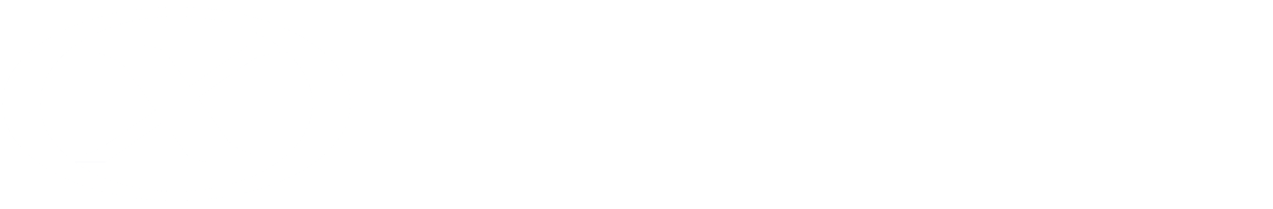Nexios IT -  logo